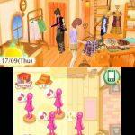 Console New Nintendo 3DS + La nouvelle maison du style : Les Reines de la Mode préinstallé de la marque Nintendo image 4 produit