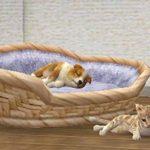 Nintendogs + cats Golden Retriever & ses nouveaux amis - Nintendo Selects de la marque Nintendo image 4 produit